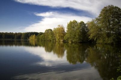 Angelteiche und Angelgewässer für Karpfen in der Lausitz